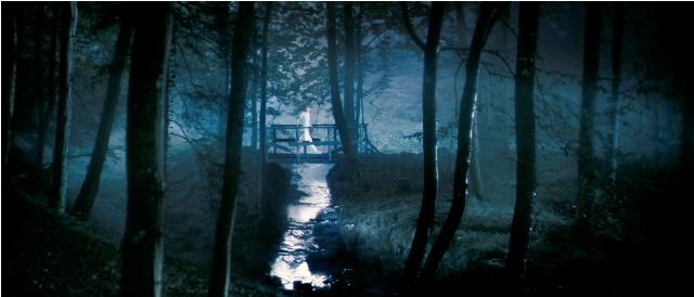 Charlotte Gainsbourg stars in Lars von Trier's Antichrist.