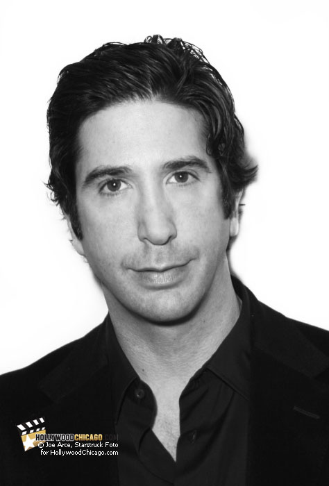 David Schwimmer at the Chicago Internatonal Film Festival, October 18th, 2010