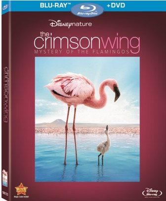 The Crimson Wing was released on Blu-ray and DVD on October 26th, 2010