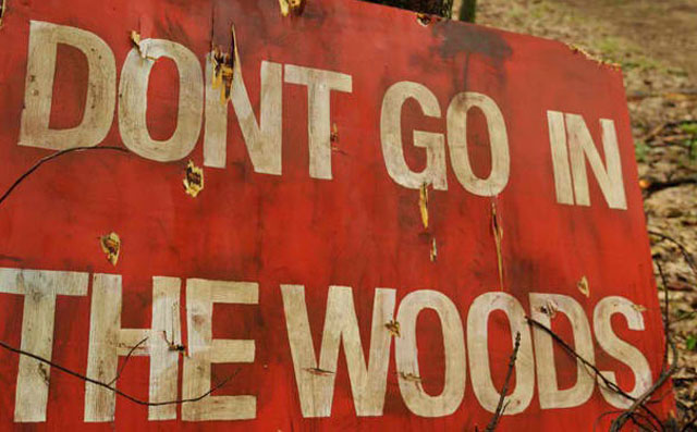 The Title Card for 'Don't Go in the Woods,' Directed by Vincent D'Onofrio
