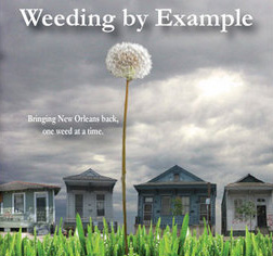 Weeding By Example